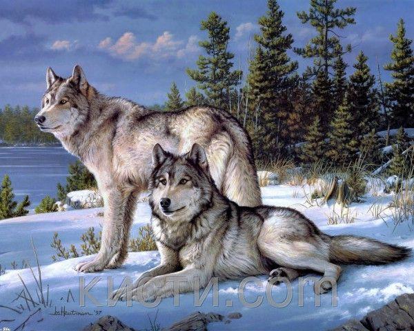 Купить Картина раскраска по номерам Хранители леса в ...