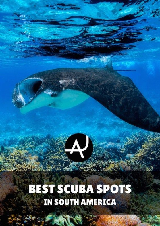 The 8 Best Scuba Diving Sites in South America - Best Scuba Diving Destinations - Diving Bucket List - Adventure Vacations - Beautiful Locations and Places to Dive via @theadventurejunkies http://www.deepbluediving.org/cressi-leonardo-vs-giotto/