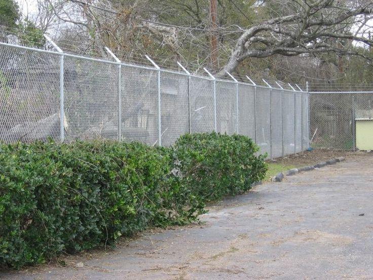 23 best Chain Link Fences images on Pinterest | Chain links, Fences ...