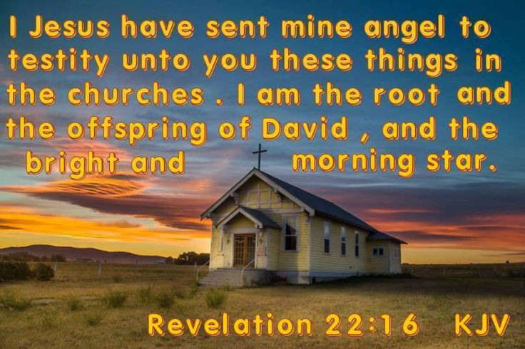 "Revelation 22:16 KJV!! ( http://kristiann1.com/2015/04/07/rev2216/ ) ""I Yeshua-Jesus have sent Mine Angel to testify unto you these things in the Churches. I am the Root and the Offspring of David, and the Bright and Morning Star."" ✝✡Hallelujah & Shalom!! Kristi Anne✡✝"