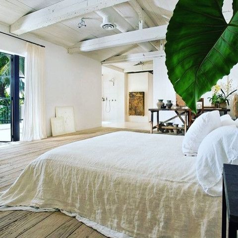 Green plants in the bedroom   The best of the best – Calvin Klein's beach house on the blog   Copper and Cross