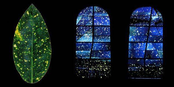 Marc CouturierÉglise St Leger, Oisilly - Atelier FLEURY - Création de vitraux d'artistes