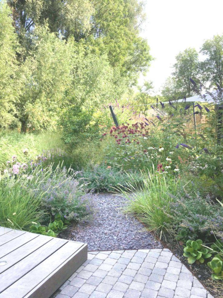 Gartengestaltung Oder Landschaftsarchitekt Wir Gestalten Garten Zum Leben Garten Garten Landschaftsbau Garten Pflanzen