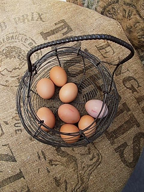 Vintage French Handmade Wire Basket. Authentic, Kitchen Storage, Primitive, Vintage Wire Basket, Egg Basket. Home Decor, Housewarming Gift. by FabFrench on Etsy