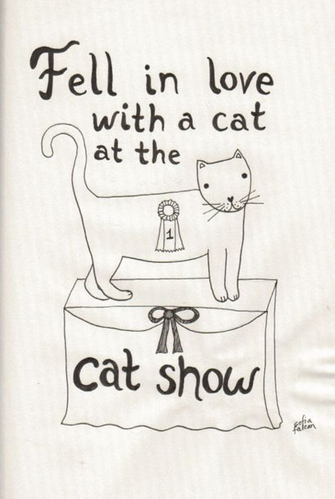 """Blink-182 - """"The Rock Show"""" 