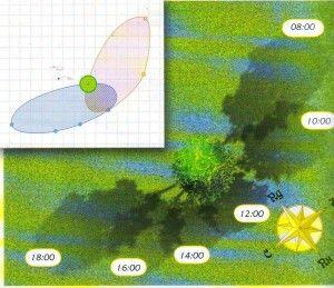 Определяем зоны тени на участке