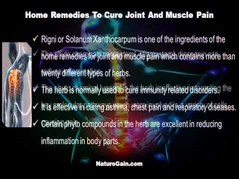 This video describes about how to cure joint and muscle pain with home remedies available. You can find more detail about Rumoxil capsules at http://www.naturogain.com