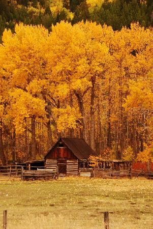 Fall in Paradise Valley, Montana