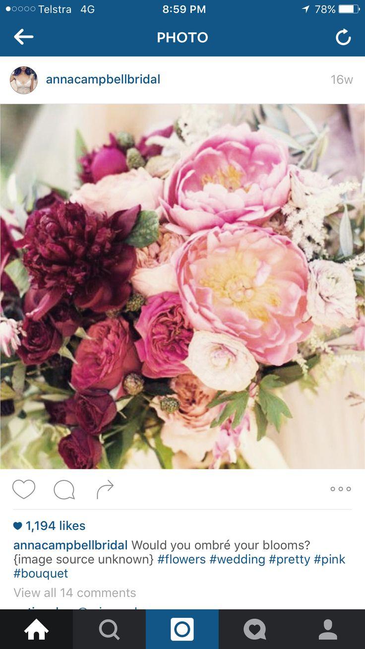 best fleur images on pinterest flower bridal and casamento
