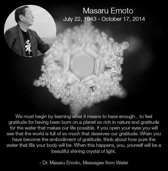 Such a dear quote from such a dear man. RIP, Dr. Emoto!