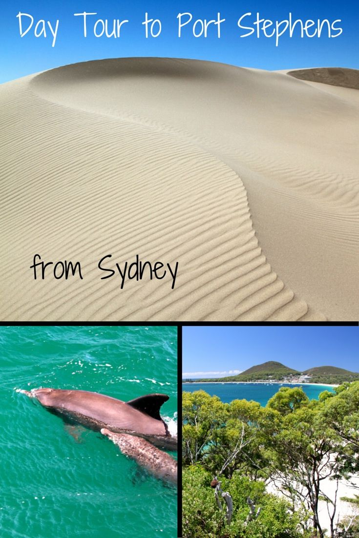 Day Tour to Port Stephens from Sydney: White sand dunes, turquoise waters, dolphins and more