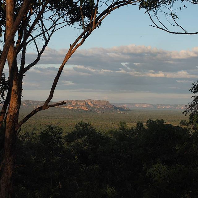 Mirrai Lookout walk in Kakadu National Park has views out over every direction in the park   Inspiring travel photos of Australia   See Something New