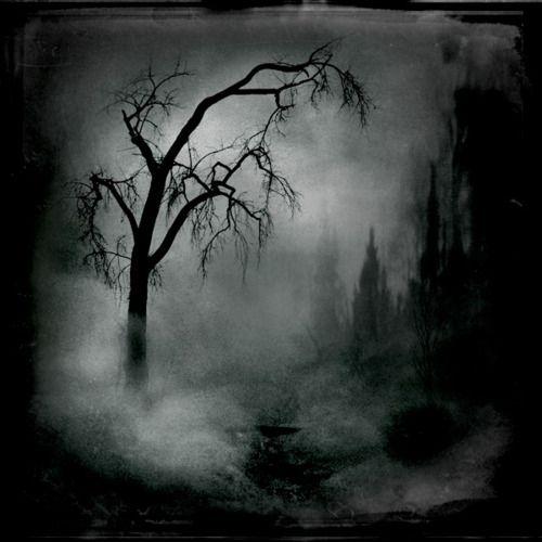 Oooooooo!  On a foggy Halloween night the tree spirits come out