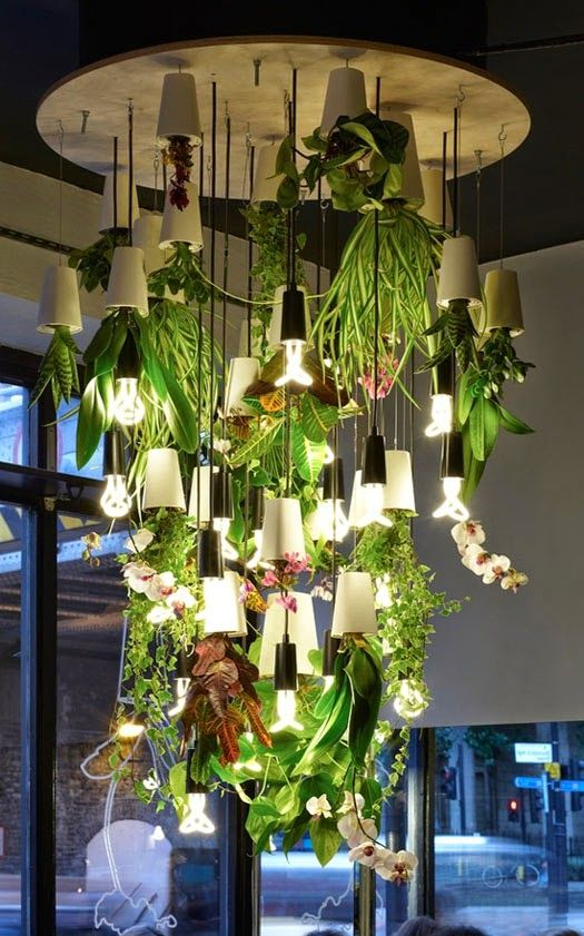 boskke sky planter - Buscar con Google