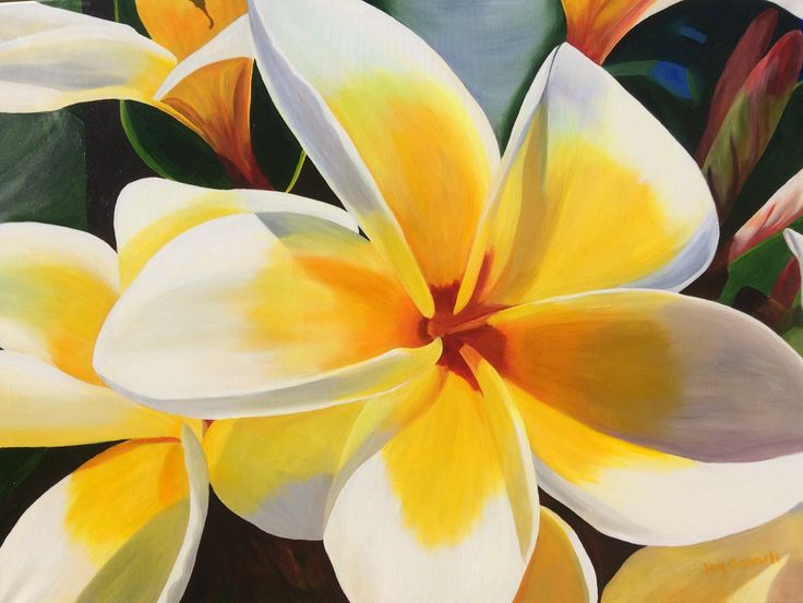 """Sunshine Frangipani"" by Joy Connell. Paintings for Sale. Bluethumb - Online Art Gallery"