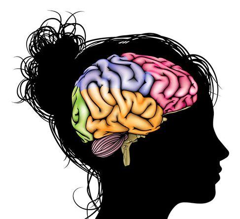 ¿Científica o artística? Equilibra tus hemisferios | Blog #Thiomucase