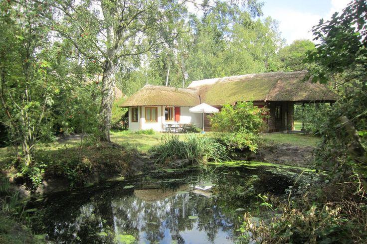 Der kleine flache Teich hinter dem Haus