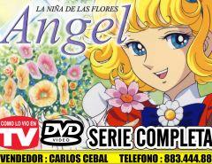 ANGEL LA NIÑA DE LAS FLORES