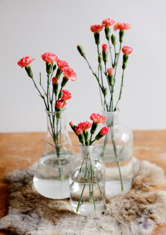 Chemistry Beakers As Clear Flower Vases Bouquet
