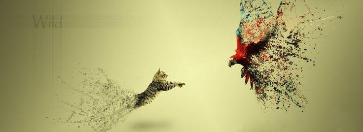 Wild life.