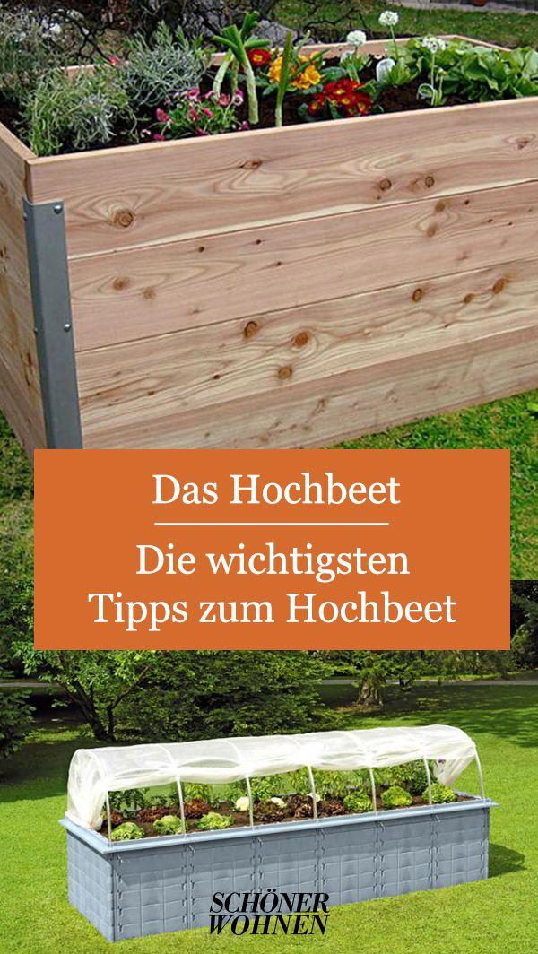 Hochbeet Mit Fruhbeet Von Juwel Bild 12 In 2020 Hochbeet Garten Beete