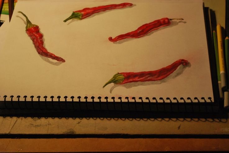 Illustration of Fresh Red Chillies - ©Æ Sastrias 2014 - Drawing coloured by Stabilo pencils