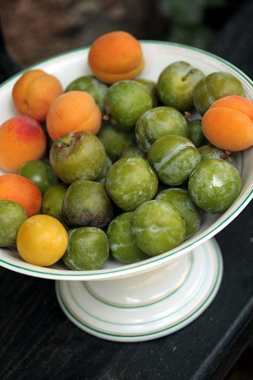 Best 25 Green Fruit Ideas On Pinterest Vegetables