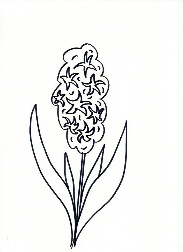Lettering line drawing motivation how to draw flowers