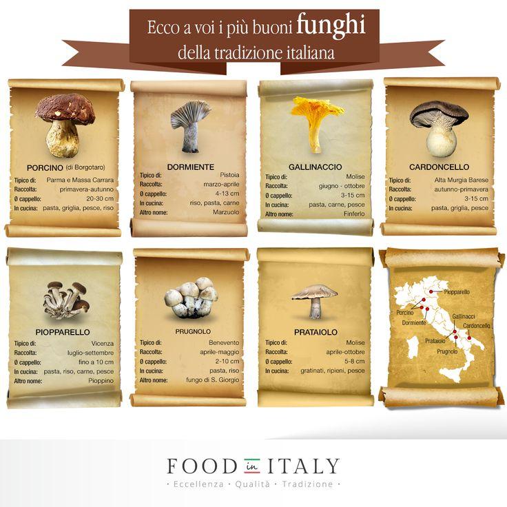 Porcino o gallinaccio, prataiolo o cardoncello? Voi con cosa lo fate il risotto? Ecco quali #funghi italiani utilizzare per le più buone ricette di cucina.