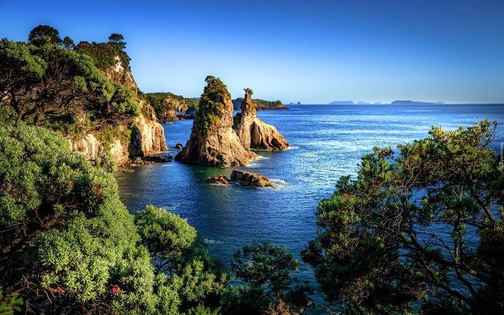 Új-Zéland, Hahei, tenger, sziklák, part, bokrok