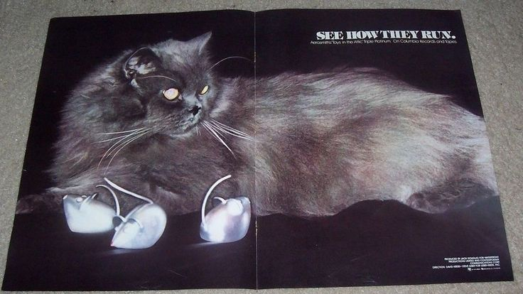 Aerosmith Music Ad Toys In The Attic Album Full Poster Flyer