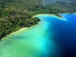 Selva Lacandona, Chiapas: Wait