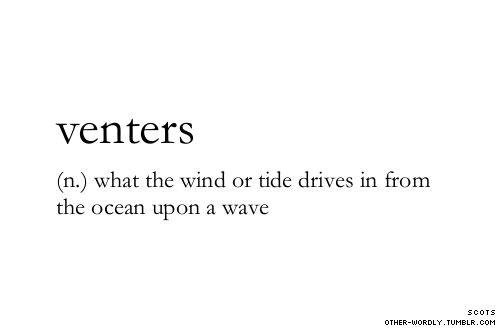 pronunciation | 'ven-ters notes | Scots is a language distinct from Scottish English and Scottish Gaelic. Venters as used here has no relation to venter, deriving from ventral, meaning the underside of an animal's body.                                venters, noun, scots, ocean, tide, wind, shore, beach, water, washed ashore, what the wind or tide drives in from the ocean upon a wave, words, word, strange words, strange word, unusual words, unusual word, definition, def