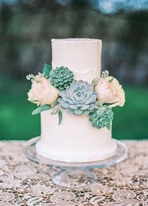 Simple rustic succulent two-tiered wedding cake