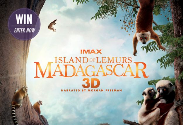 Win 1 of 10 family passes to ISLAND OF LEMURS: MADAGASCAR 3D