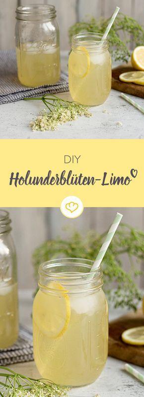 Holunder riecht nicht nur gut, man kann auch viele köstliche Rezepte mit ihm zubereiten. Zum Beispiel zur Basis deiner spritzigen DIY-Limo.
