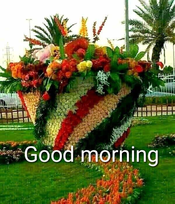 Good Morning Most Beautiful Gardens