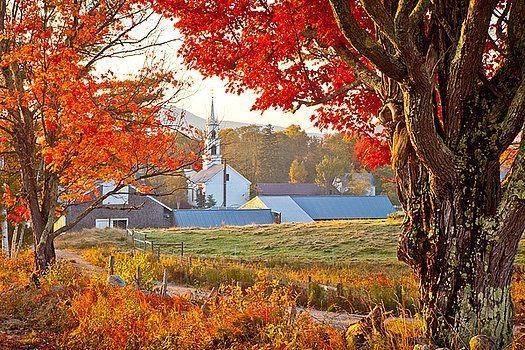 Susan Cole Kelly - Tamworth Farm in Autumn