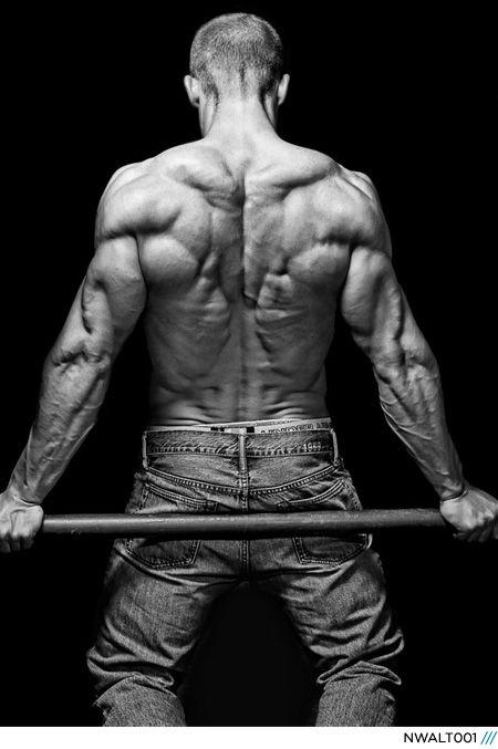 Male anatomy back
