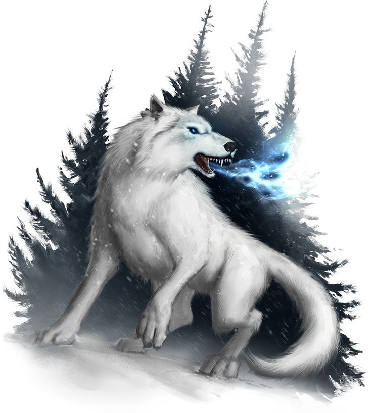 61. With the first light they went off. After two hours they were attacked by winter wolves. And ther understood that cold weather was not the only danger on the journey also the monsters came by with cold.