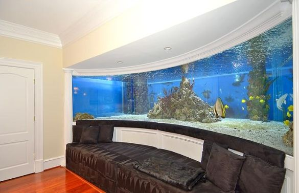Gilbert Arenas' Shark Tank Mansion Returns to the Market