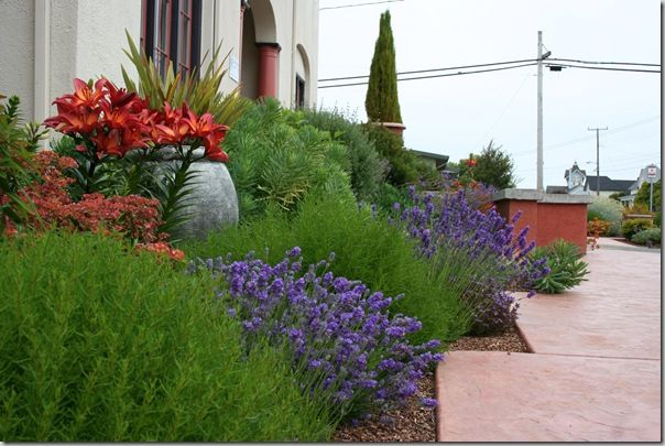 Mediterranean garden design how to create a tuscan garden gardens green and colors - Mediterranean garden plants colors and scents ...