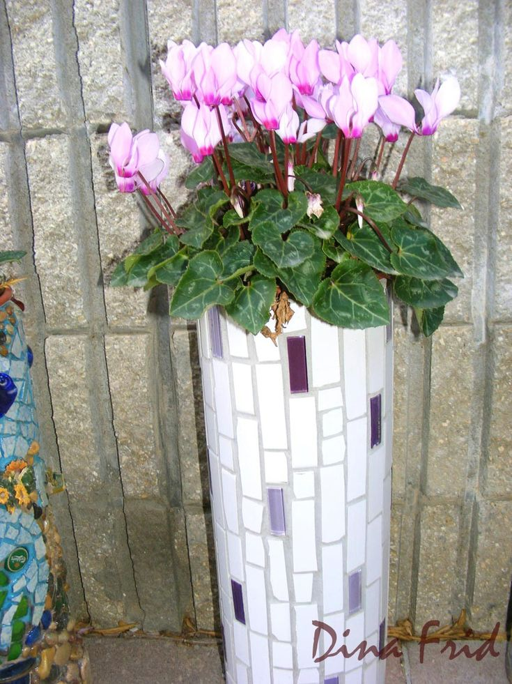 Make your own interesting planters from PVC pipe, tile adhesive, grout and décor (shells, glass, mosaic blocks, ceramic)