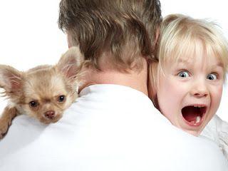 Hunde-ausbilden: Sie möchten Hundetrainer werden, um professionell ...