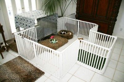 puppy pen made with PVC pipes