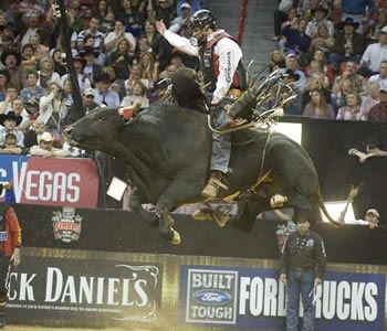526 Best Bull Riders Images On Pinterest Bull Riders