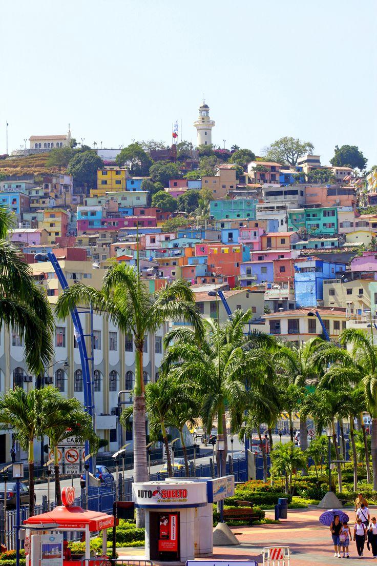 Amazing scenery! Guayaquil, Ecuador