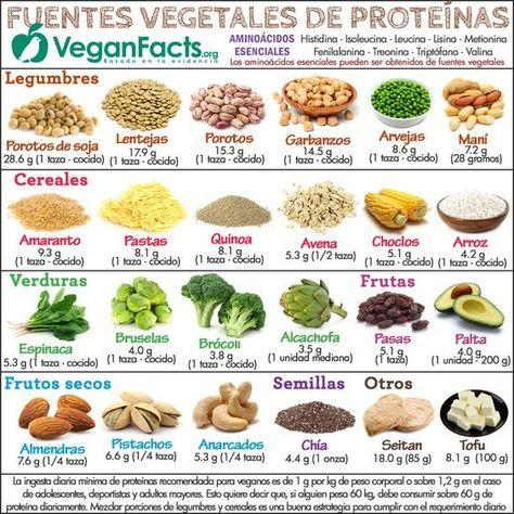 Fuentes de proteínas vegetales en la dieta vegana y vegetariana – Infografías   Nutrición Vegana, Alimentación y Veganismo