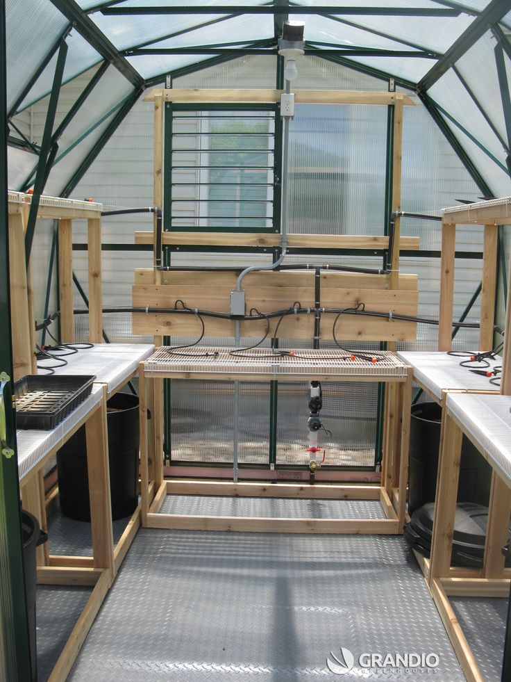 The 25 best elite greenhouses ideas on pinterest cheap for Inexpensive greenhouse shelving wood