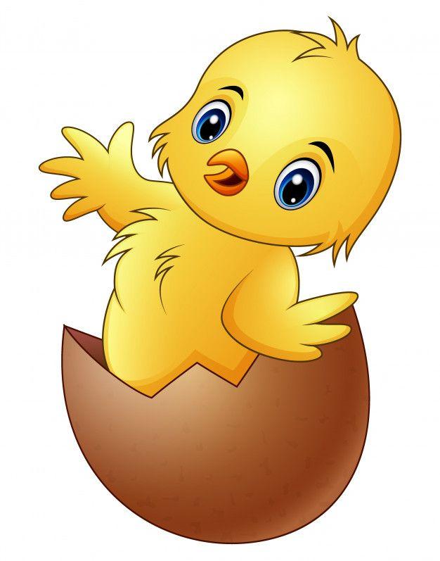 Pequeno Pollito De Dibujos Animados En La Cascara De Huevo Roto Vector Premium Pollitos Dibujo Pollo Animado Cosas Lindas Para Dibujar